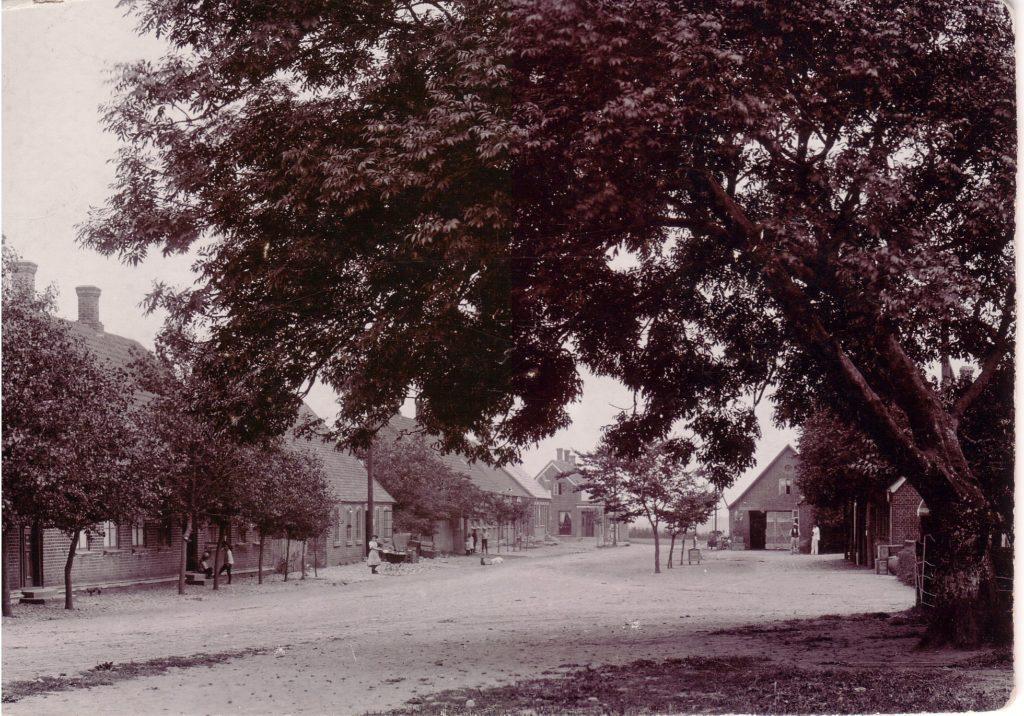 Det gamle træ, som står på kirkepladsen, en beskeden plads mellem Bredgade og kirkegårdsmuren er her fotograferet i sin fulde pragt en sommerdag omkring 1900. Såvel hestevogne som de få biler kunne snige sig under grenene.