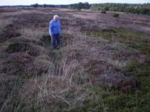 Ruth Pedersen har ikke svært ved at finde frem til de fordybninger i terrænet, som de britiske bomber markerede i heden.
