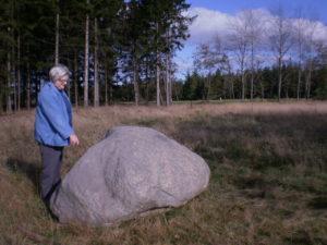 """- Mange barndomsminder dukker frem hos Ruth, da vi når frem til den store sten """"Bindstouw"""". Det var her, jordmoderhuset lå. I baggrunden kommer så den første af vores marker, og lidt længere henne lå """"Meldgård"""", der forlængst - ligesom jordmoderhuset - er blevet revet ned."""